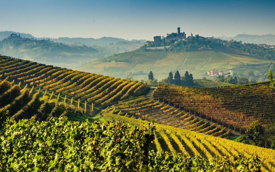 Barolo & Barbera Grand Cru Tour